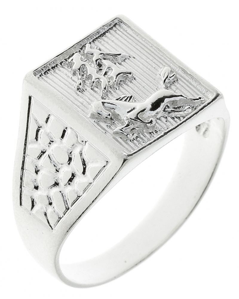 Male silver ring
